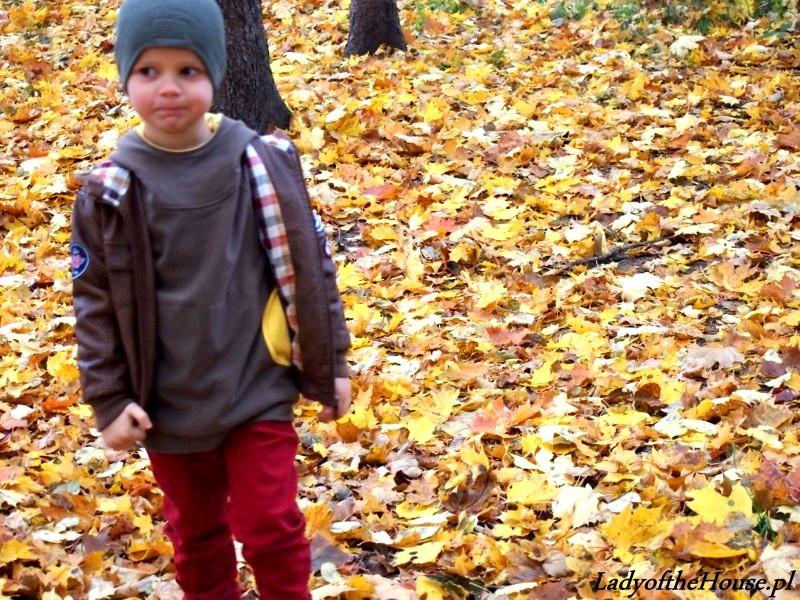 spacer po liściach
