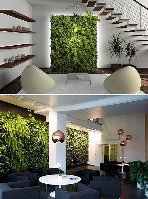 zielone-sciany-w-domu